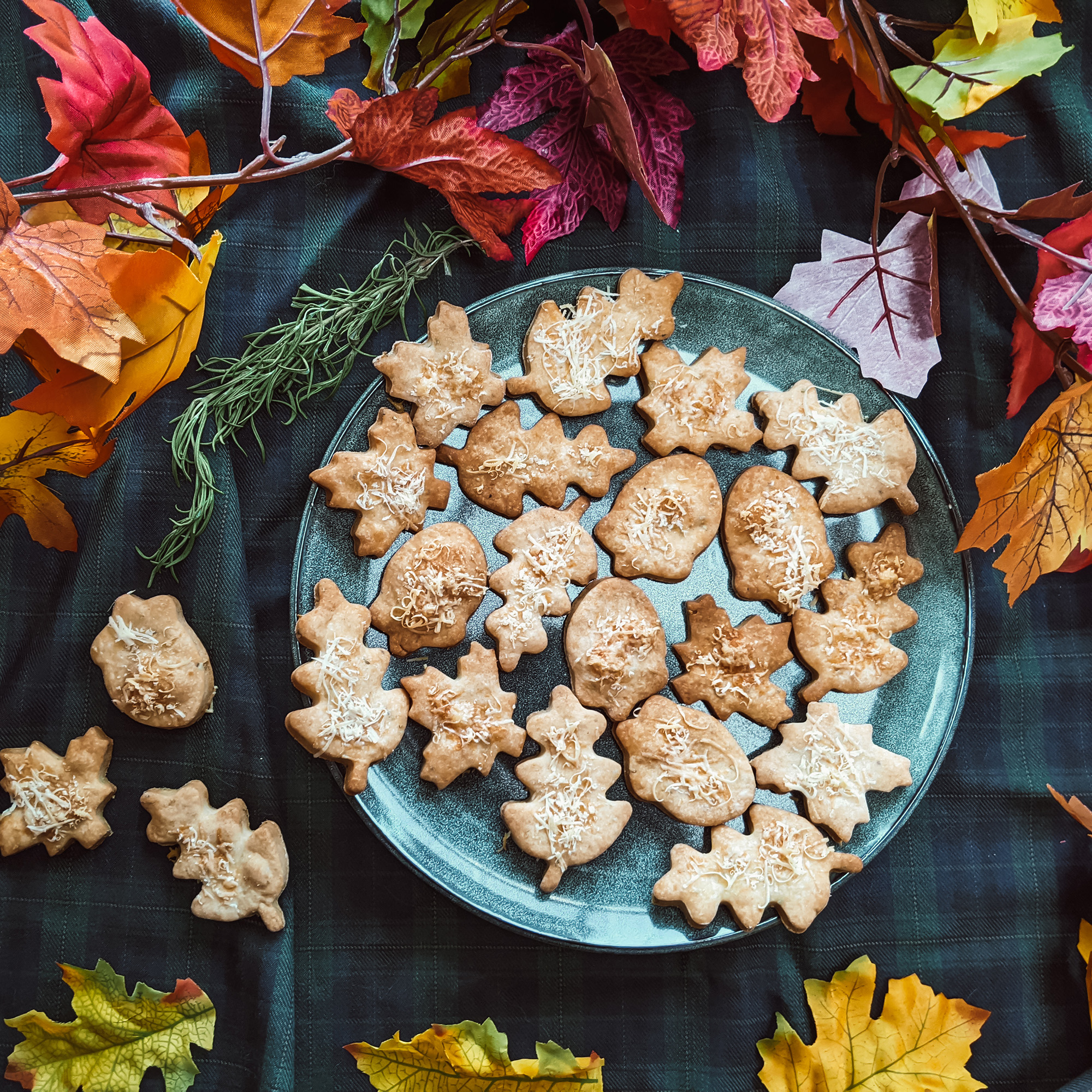 Oktoberdots hartige kaaskoekjes recept